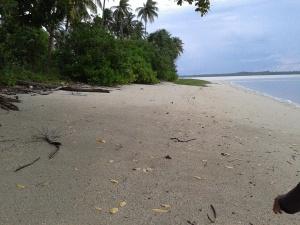 Pantai di Pulau Nanas