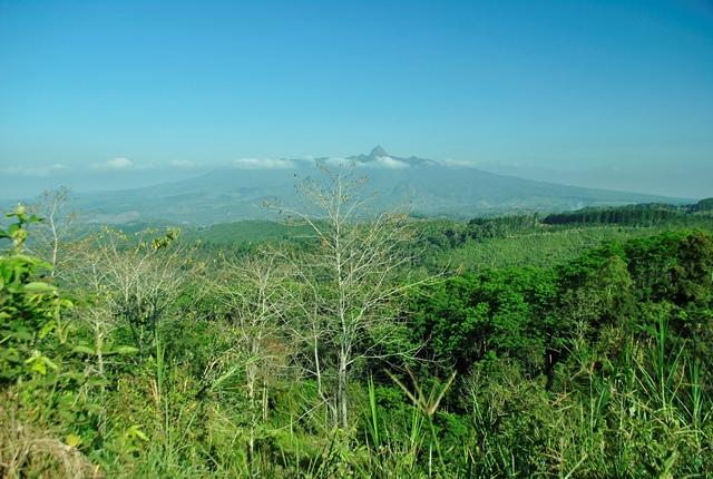 Gunung Kelud di kejauhan